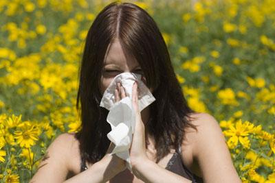 local-honey-for-allergy-1